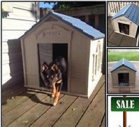 outdoor dog houses for extra large dogs big dog frame for sale classifieds