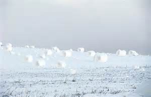 the amazing self rolling snow bales that show mother