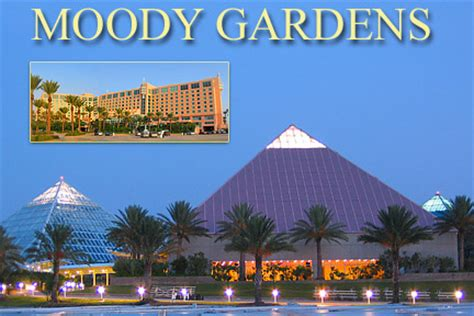 Moody Gardens Hotel by Bud Light Tank It Up Z94 The Rock Station