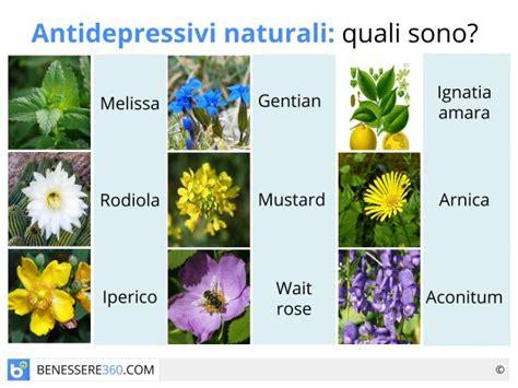 i fiori di bach sono efficaci antidepressivi naturali sono efficaci benefici ed