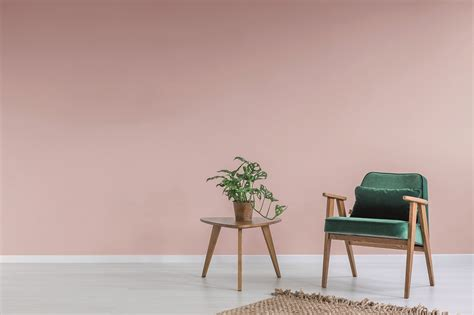 idropitture per interni idropittura murale ad alta copertura per interni pittura