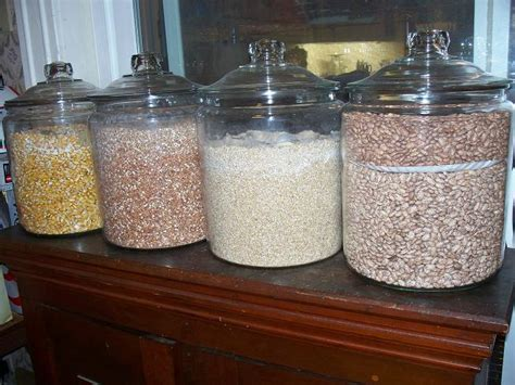 dianes dynamics  long term food storage pantry part