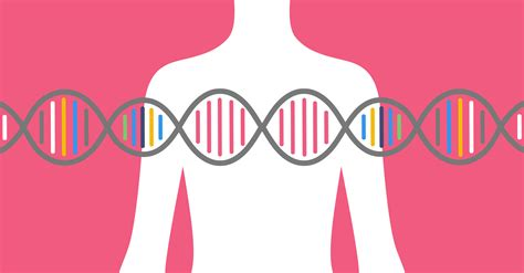 understanding brca living with the breast cancer gene books brca archives helix