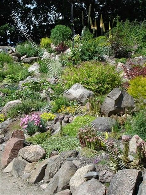 Hillside Garden Ideas Beautiful Hillside River Rock Landscaping Ideas Search Landscaping Rock