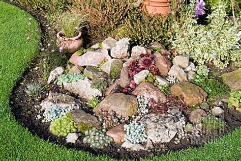 Information About Rock Garden Lzc1140 Succulents In Rock Garden In October Asset Details Garden World Images