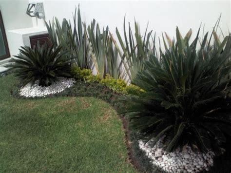 disenos de jardines para casas 133 best jardines images on pinterest succulents cacti