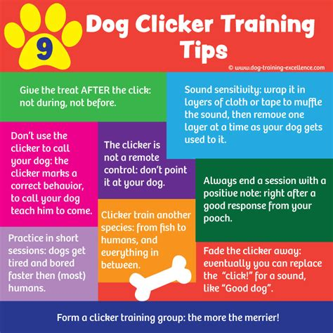 how to clicker a puppy 23 free clicker tips for best results