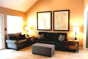 Wall Color Schemes by Living Room Paint Colors Home Design Photos 2016 Living
