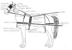 parts of a driving harness bridle parts get free image about wiring diagram