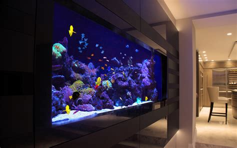 design your aquarium online aquarium supplies australia buy fish tank buy marine fish