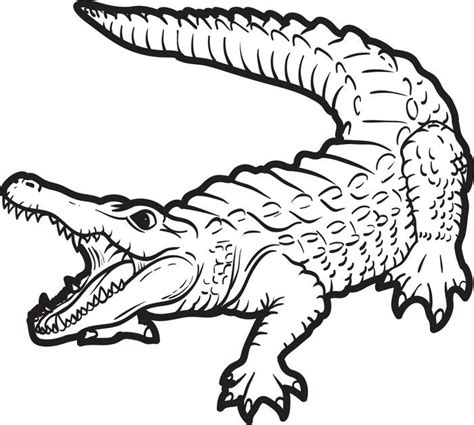 free printable alligator coloring page for kids 2