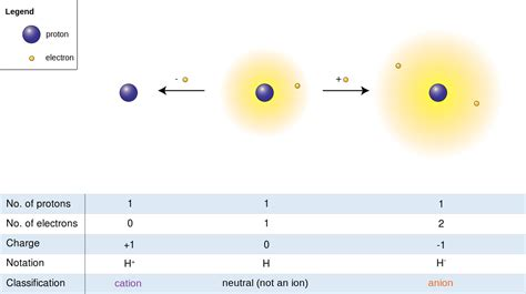 difference between cation and anion