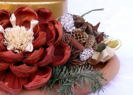 fiori dicembre fioriture di dicembre pollicegreen