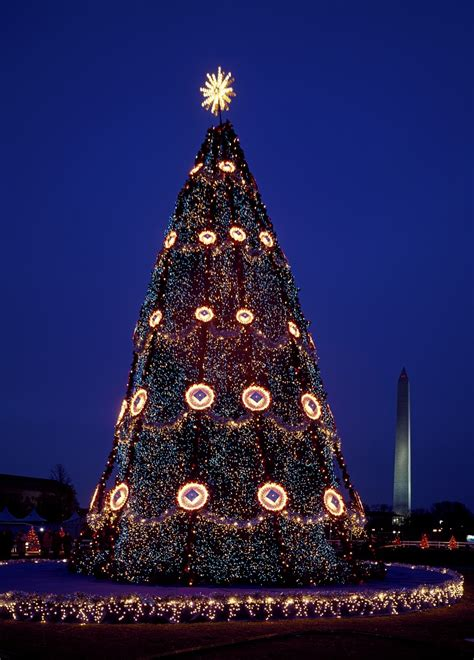 national christmas tree lighting dc dc walkabout