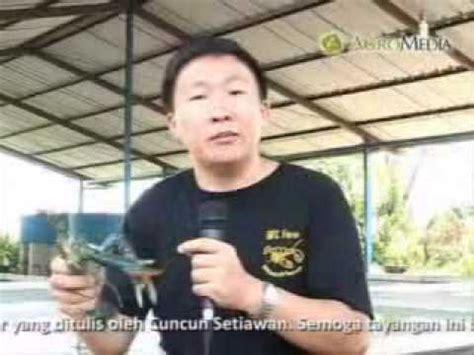 Seri Budi Daya Lobster Air Tawar jurus sukses budi daya lobster air tawar