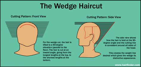Diagram Of Wedge Haircut | wedge haircut diagram