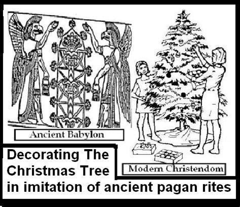 what is the tradition of the tree the chistmas tree and ancient pagan traditions
