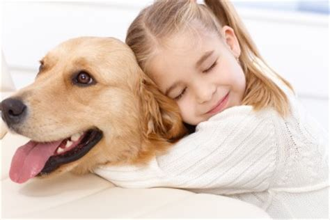 loving dogs all about dogs as pets for