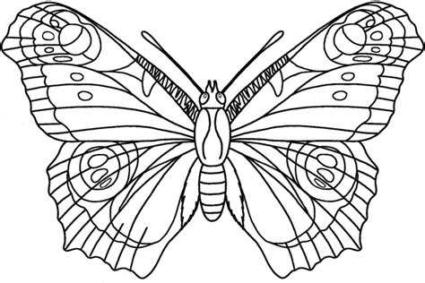 Butterfly Colouring Pages » Ideas Home Design