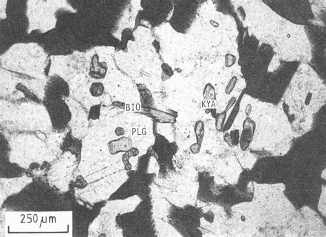 rutile thin section rutile thin section images