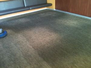 Upholstery Cleaning Portland Oregon by Carpet Cleaning Pictures Portland Or Carpet Cleaners