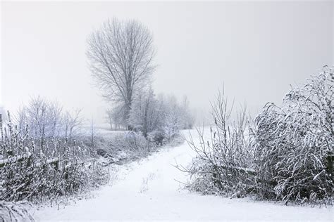 photos of snow free stock photo of cold landscape road