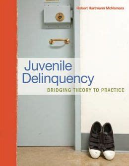 juvenile delinquency theory practice and juvenile delinquency bridging theory to practice