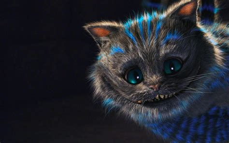 cheshire cat wallpaper tumblr trippy cat wallpaper 64 images
