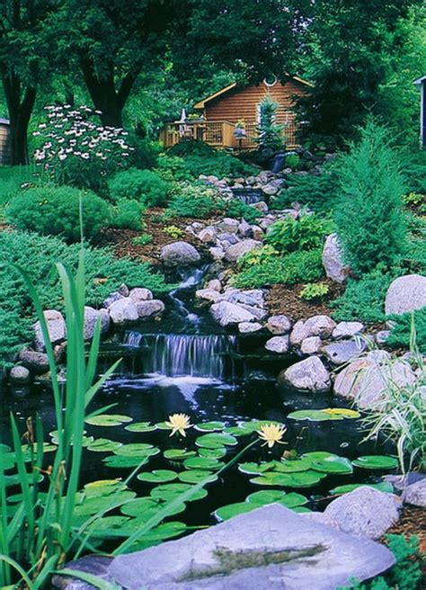Backyard Nature by Useful Tips To Create A Paradise In Your Backyard