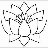 Lotus Flower Black And White Drawing | 500 x 485 jpeg 51kB