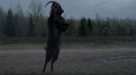 The Story Of The The Witch And The Wardrobe by The Real Story Of Black Phillip On The Set Of The Witch