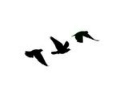 bird silhouette tattoos pinterest silhouettes