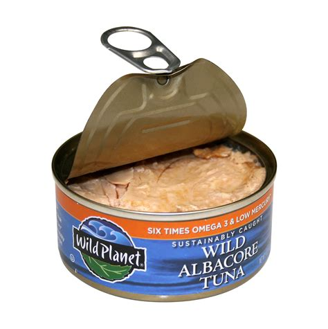 can dogs tuna tuna fish can