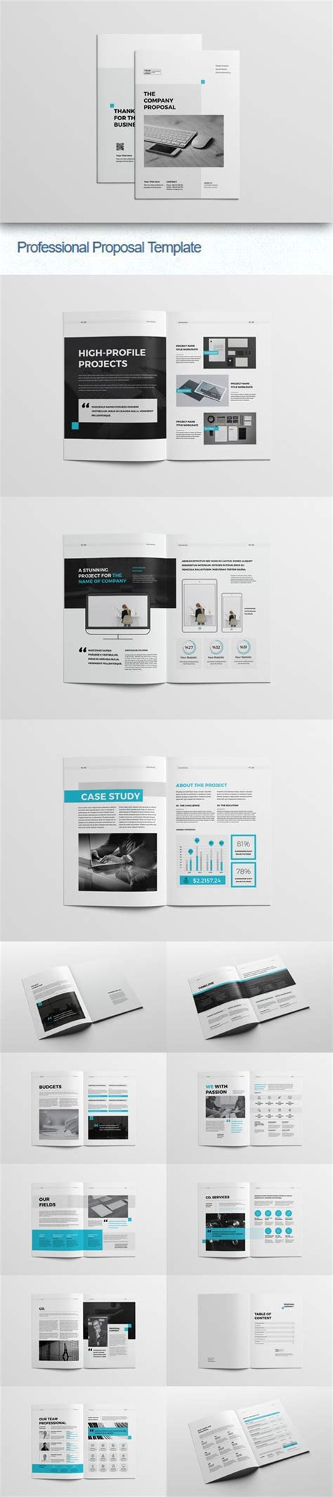 professional proposal indesign indd idml template
