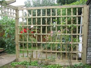 Large Garden Trellis Az Contracting