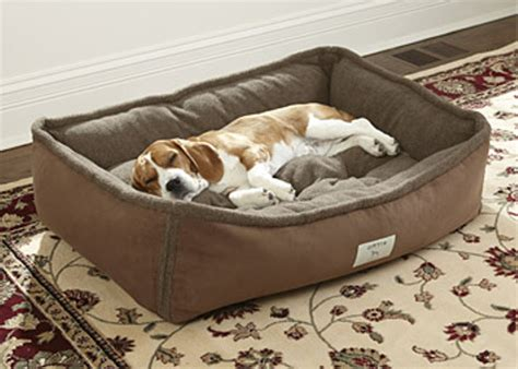 dog bed removable cover dog bolster bed with removable cover frontage dog bolster
