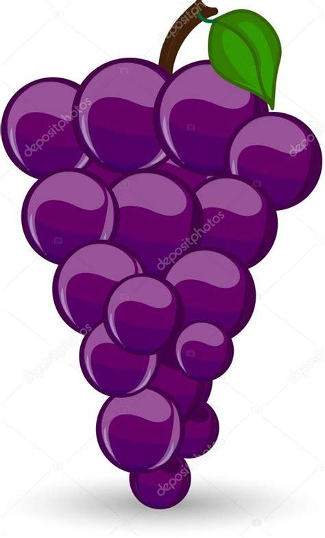 imagenes de uvas uvas para colorear related keywords uvas para colorear