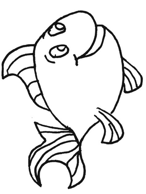 detailed rainbow coloring page animal coloring books google search seal on rainbow