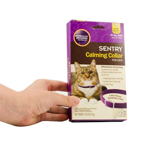 calming collar amazon com sentry calming collar for cats 1 pack pet