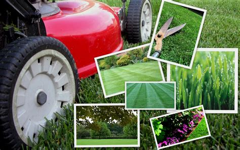 Gardening Services All You Need To About Choosing The Right Lawn Care