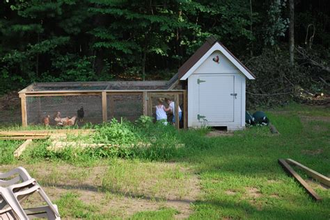 Backyard Chicken Coop Plans Diy Backyard Chicken Coop Plans With Diy Backyard Chickens The Gogo Papa