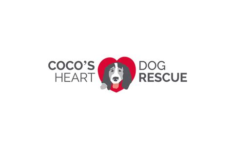 coco s rescue s pet world and coco s rescue together