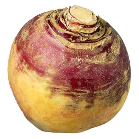 rutabaga fruits and vegetables