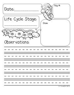 printable caterpillar observation journal free butterfly life cycle lesson homeschool giveaways