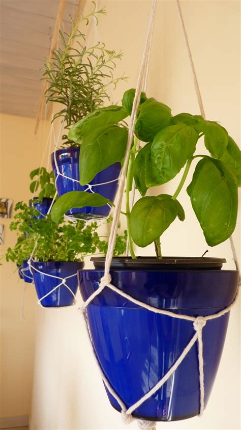 indoor hanging herb garden how to make your own indoor hanging herb garden