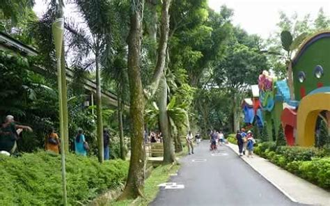 singapore amusement parks pinnacle of entertainment the picture of singapore s jarong bird park at jurong