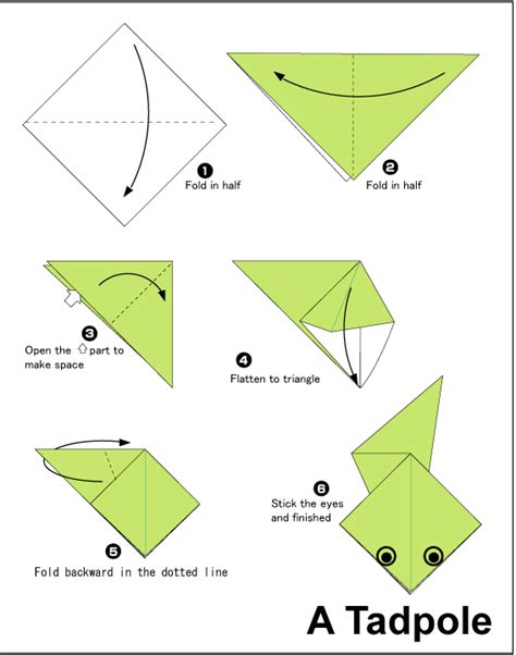Origami Frog Steps - tadpole easy origami for