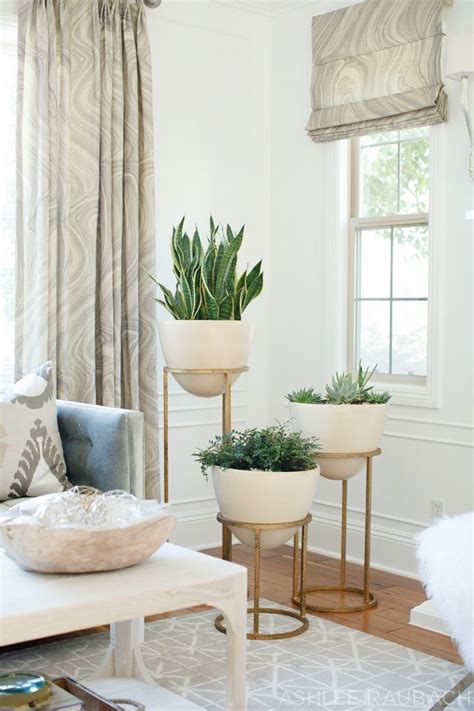 home decor plants living room 25 best ideas about living room corners on pinterest