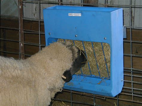 Goat Hay Rack Feeder by Sydell Sheep Goat Hay Grain Feeders Hay Racks Mangers