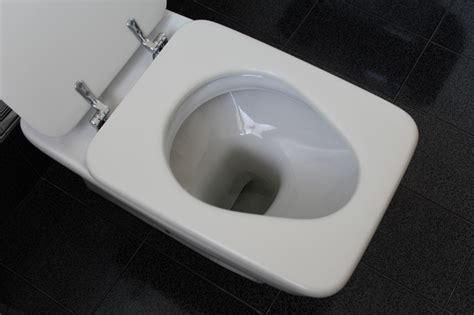 Detartrer Wc Avec Acide Chlorhydrique by D 233 Tartrer Des Toilettes Sans Acide Chlorhydrique Ecologik Fr